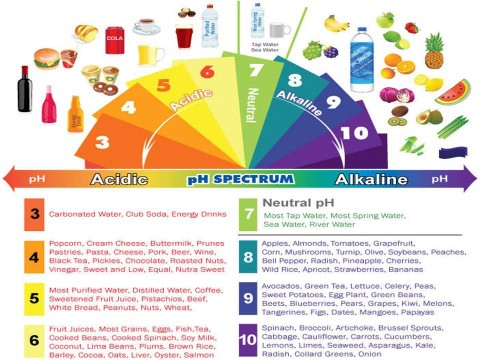 Understand pH and pH foods