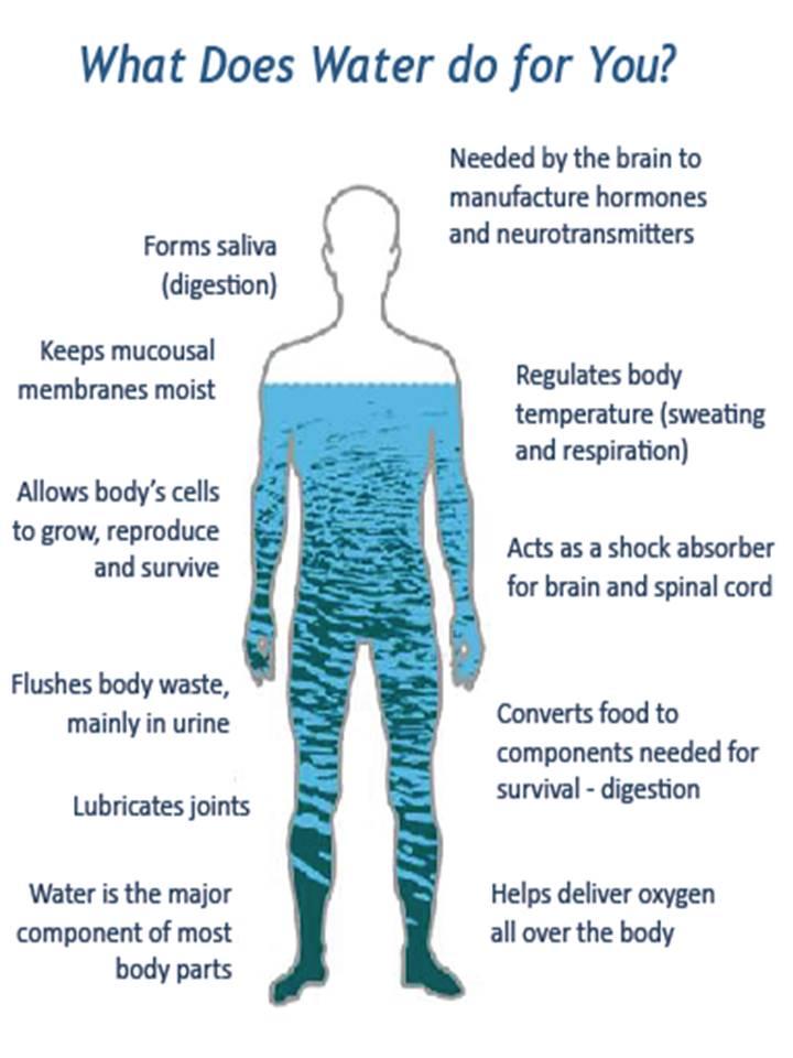 Hydrate Detox Alkalize