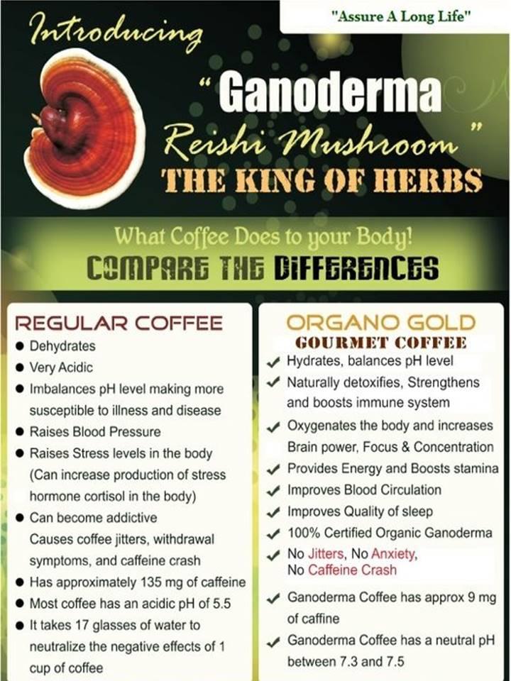 Coffee Vs Organo Gold